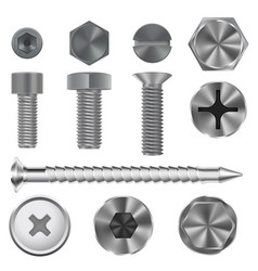 metal bolts and screws 3d set vector image