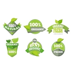 Natural green organic eco labels set vector image