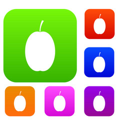 plum set collection vector image