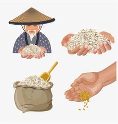 Rice harvest vector
