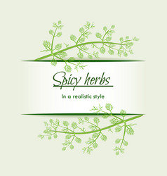 Spicy herbs in a realistic style frame vector