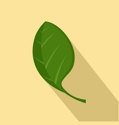 spinach leaf icon flat style vector image