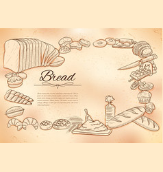 template different types bread and loafs vector image