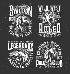 tshirt prints with horse stallion heads sport vector image