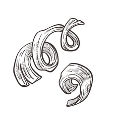 Wooden shavings and curly wood chips hand drawn vector