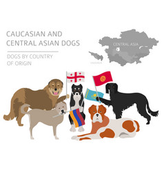Dogs by country of origin caucasian and central vector