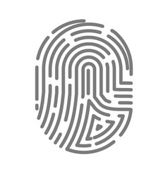 fingerprint or fingertip print pattern vector image