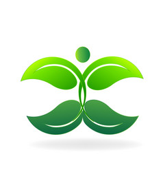 Green organic leafs icon vector