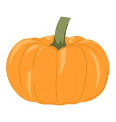 pumpkin autumn vegetable ripe veggie harvest vector image