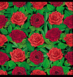 Seamless pattern of red roses and leaves on black vector