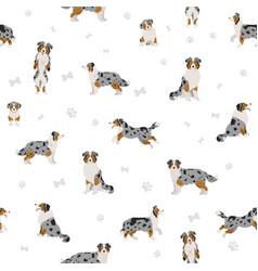 Australian shepherd dog seamless pattern vector