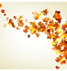 Autumn falling leaves background EPS 10 vector image