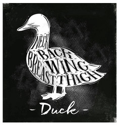 duck cutting scheme chalk vector image