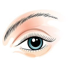 Female eye vector image