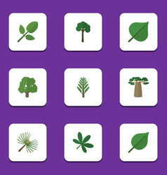 Flat icon nature set of rosemary evergreen maple vector