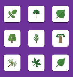 Flat icon nature set rosemary evergreen maple vector
