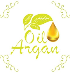 Oil drop Argan oil cosmetic falling from leef with vector image