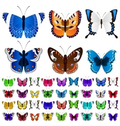 Set of colorful butterflies vector image