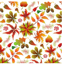 seamless light color realistic leaf pattern vector image vector image