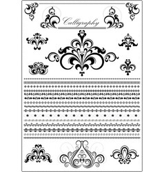 collection calligraphy borders and ornaments vector image