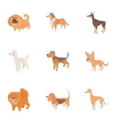 Dog icons set cartoon style vector image vector image