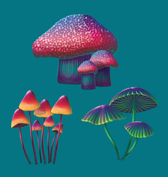 a high quality fantasy mushrooms set vector image