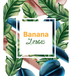 banana leaves watercolor background tropic vector image