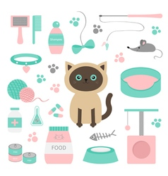 Cute siamese cat in flat design style Suff set Paw vector image