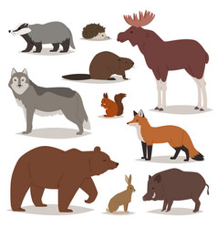 Forest animals cartoon animalistic vector