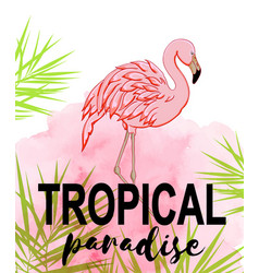 Tropical background with flamingo vector