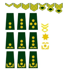 Georgian armed forces insignia vector image vector image