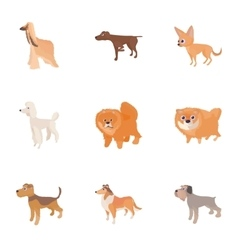 Types of dogs icons set cartoon style vector image vector image