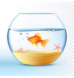 Golden Fish In Round Bowl Poster vector