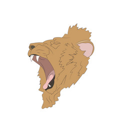 lion portrait vector image