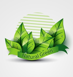 Natural green vector