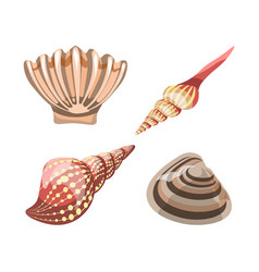 seashell element for decoration aquariums vector image