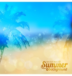 Sunny summer backdrop with palms vector image