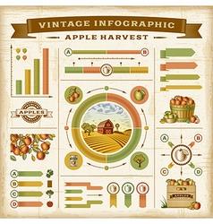 Vintage apple harvest infographic set vector image vector image