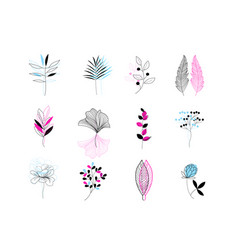 beautiful set plant icons on a white vector image