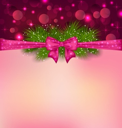 Christmas elegance background with fir branches vector image