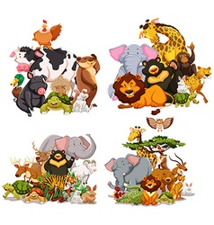 Four groups of wild animals vector