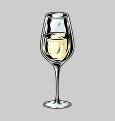 glass white alcohol wine for bar menu vector image