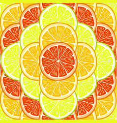 Orange lemon and grapefruit slices vector
