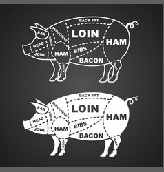 Pork cuts diagram isolated on black vector
