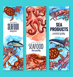 seafood fish and sea product sketch banner set vector image