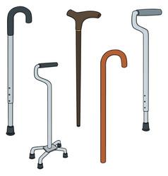 Set of walking stick vector