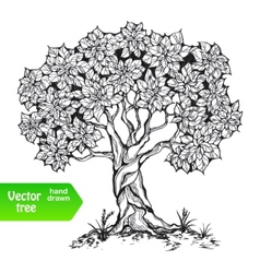 Alone tree vector image