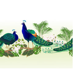border seamless background peacocks beauty vector image