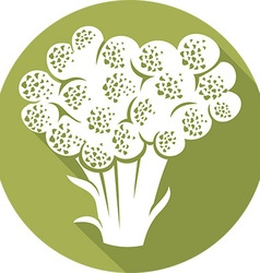 Broccoli Icon vector