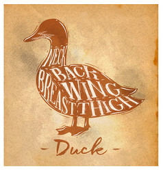 duck cutting scheme craft vector image